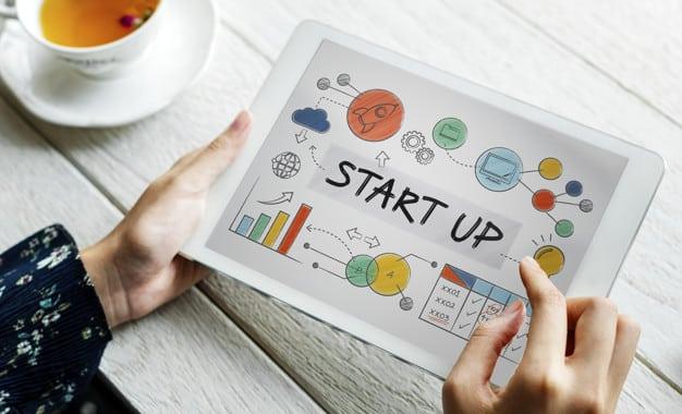 Struktur Organisasi Startup